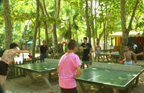 Aire ping-pong enfants